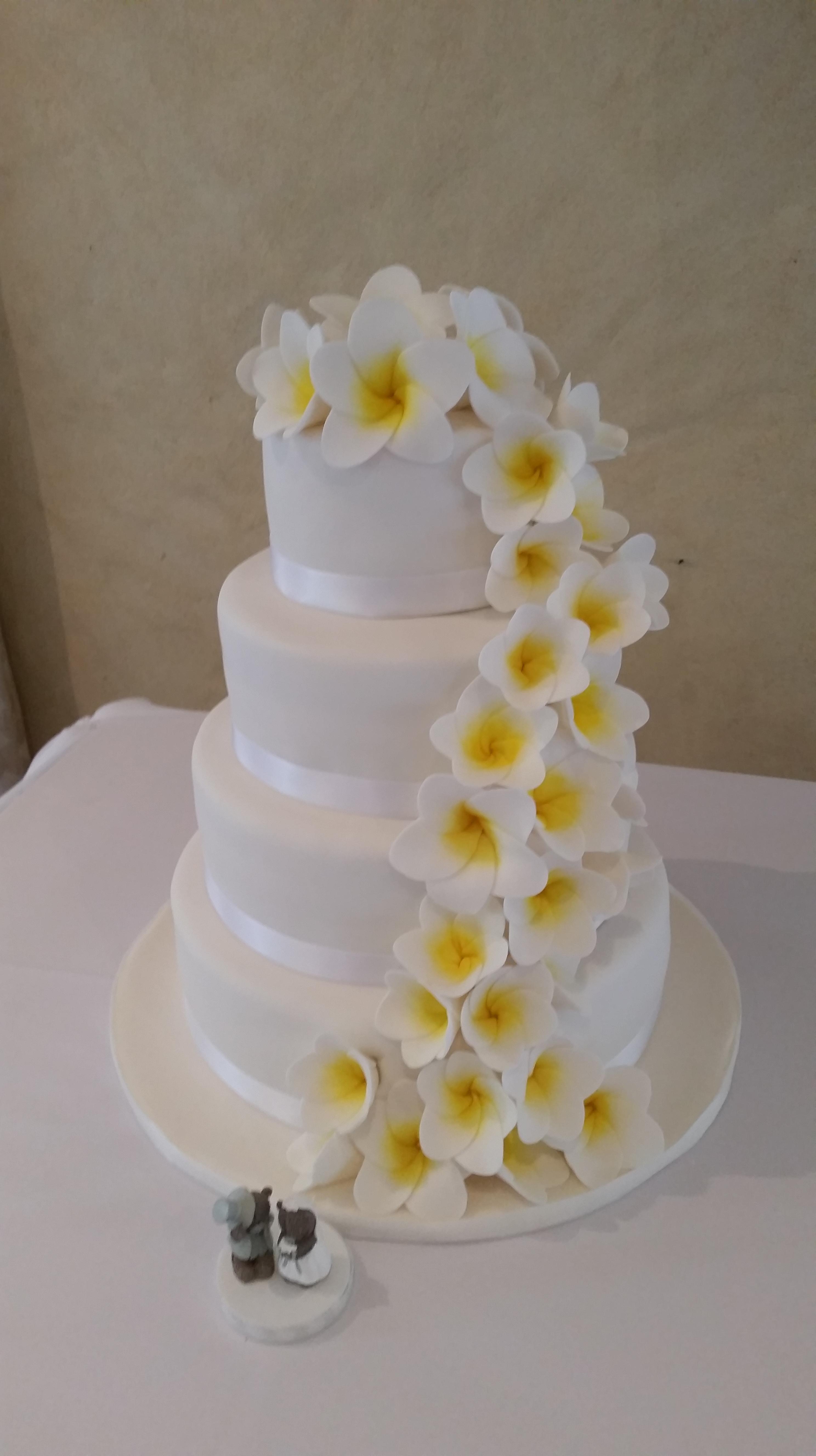 Nikkies Novelty Cakes